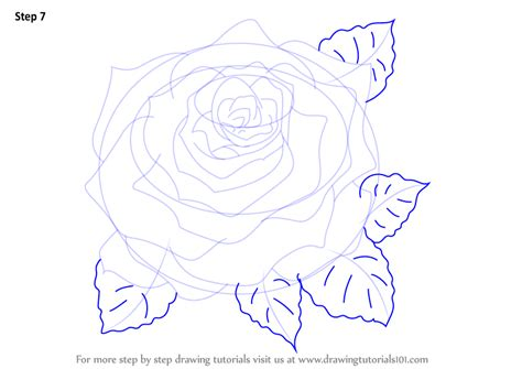 learn how to draw a rose rose step by step drawing