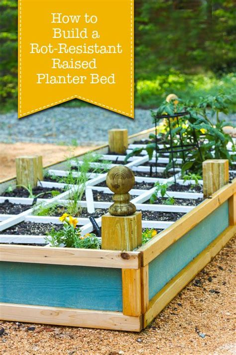 86 best images about raised garden beds on