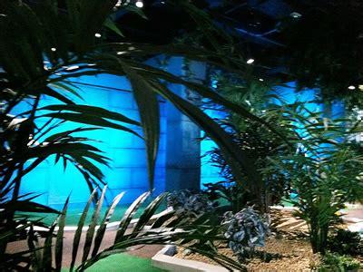 indoor mini golf cabot circus bristol jungle rumble
