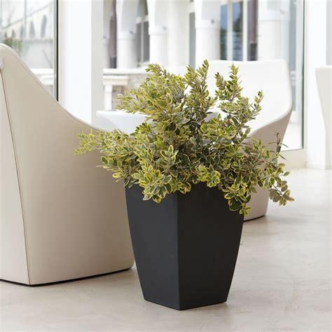 vasi da fiori ikea vaso d arredo e giardino logos nicoli