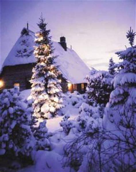 waldkirch f1 online weihnachtsbaum im schnee vor