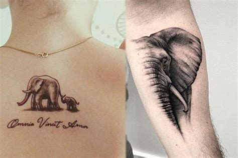 quelle est la signification des tatouages d 233 l 233 phants