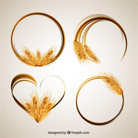 cornici gratis cornici spiga di grano scaricare vettori gratis