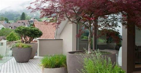 inspirierende terrassengestaltung pflanzen baum - Baum Wie Haus Pflanzen