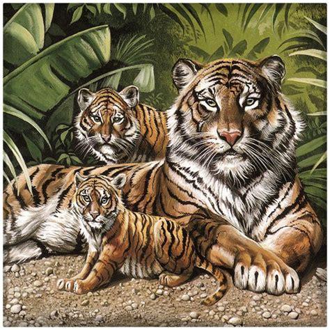 imagenes en 3d de tigres descargar imagenes de tigres en 3d archivos imagenes de