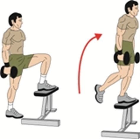 weighted bench step ups best butt building exercises workouts to build bigger butt