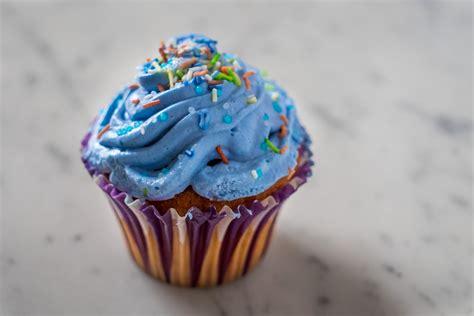 images sweet food cupcake dessert cake pastry