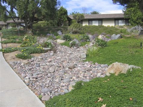 Landscaping Ideas Ground Cover Photo Gallery