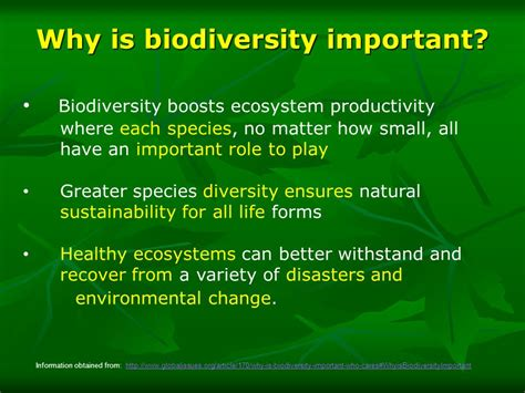 why is important biodiversity ppt