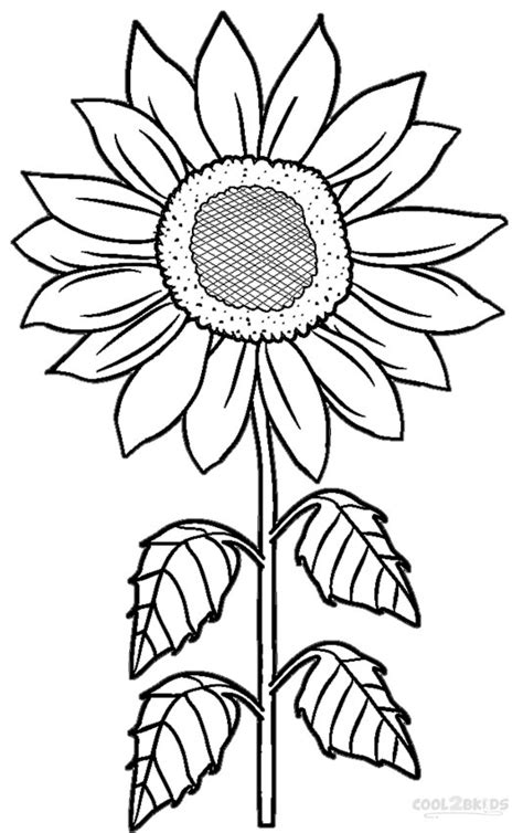 Sunflower Flower Coloring Pages Printable   Get Coloring Pages