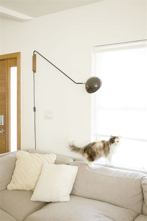 how do i stop my house smelling of dog get rid of cat litter smell in house cat spraying no more