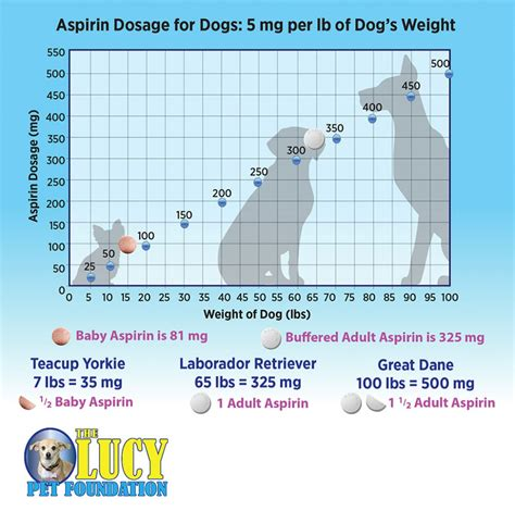 aspirin for dogs dosage what is the correct aspirin dosage for dogs mccnsulting web fc2