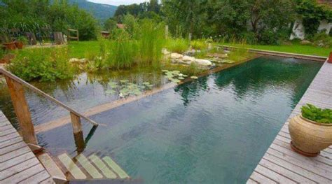 Natural Pool by The Biotop Natural Pools Home Design Garden
