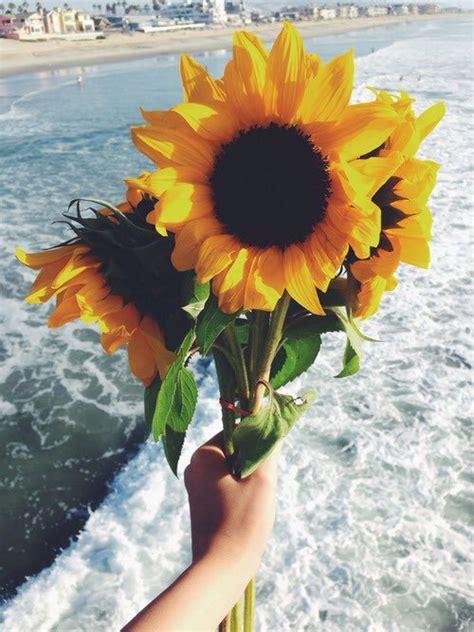 Heels Bunga Gf sunflower bouquet image 4224580 by winterkiss on favim