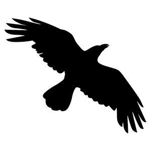 Flying Blackbird Outline by Flying Bird Outline Drawing Clipart Best