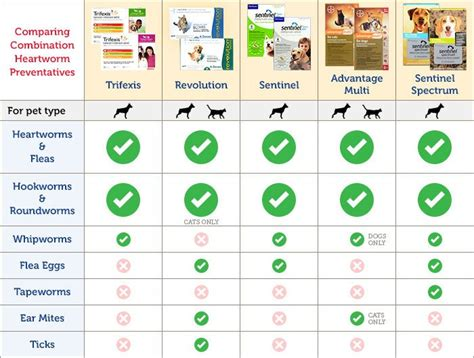 heartworm prevention choosing the best heartworm and flea prevention 1800petmeds 174