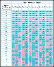 pregnancy template print pregnancy calendar week by week 2016 printable