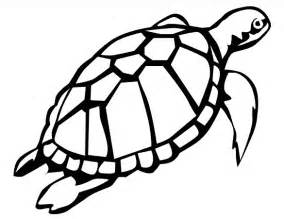 turtle color 20 turtle templates crafts colouring pages free