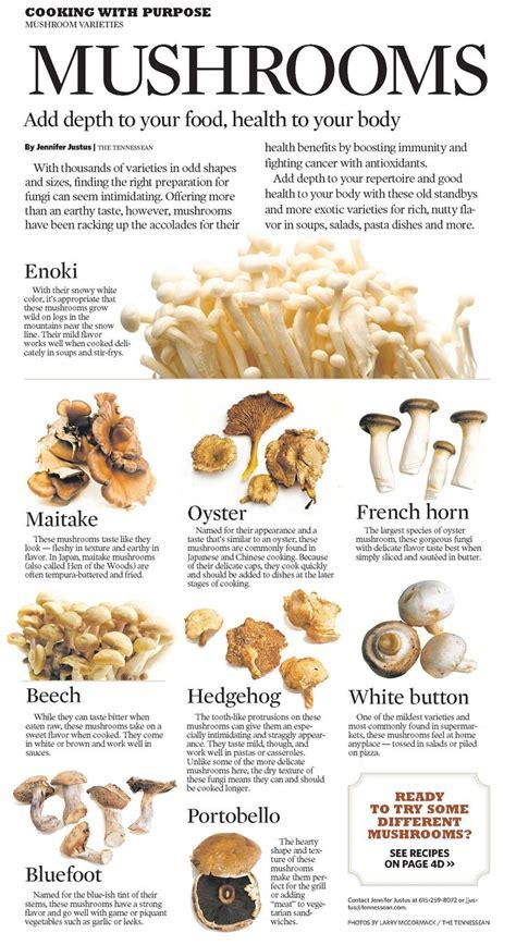 types of mushrooms enoki good for you food pinterest