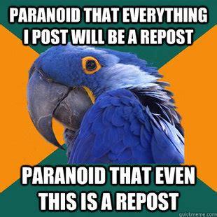 Paranoid Meme - paranoid parrot meme collection 1mut com 4 1 mesmerizing universe trend