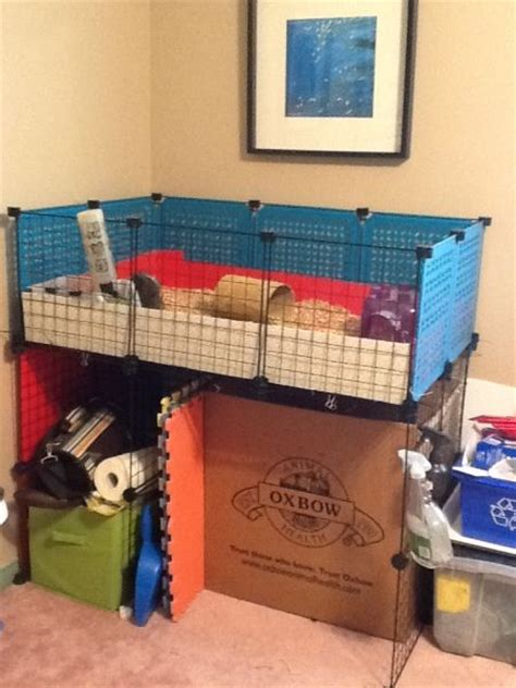 Guinea Pig Cage Shelf And R by 63 Best Images About Guinea Pig Cage Ideas On