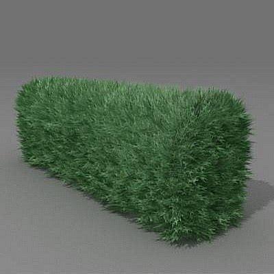 bush garden 3d model