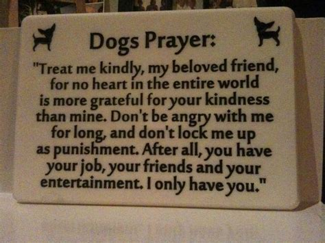 dogs prayer always treat your dogs right animals poems prayer sayings