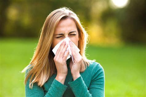 has allergies allergy relief 30 tips from doctors reader