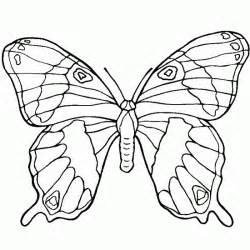Print this animals picture color this animals coloring online