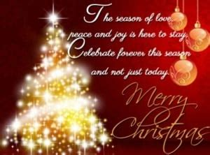 merry christmas  message  images daily sms collection