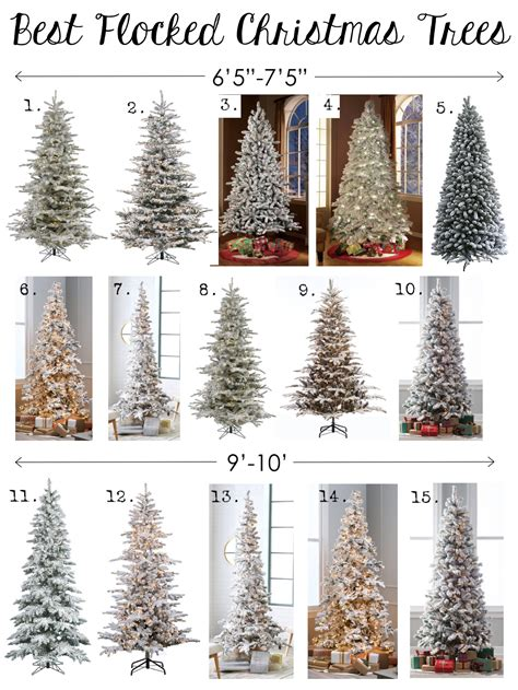 where to buy flocked christmas trees photo album