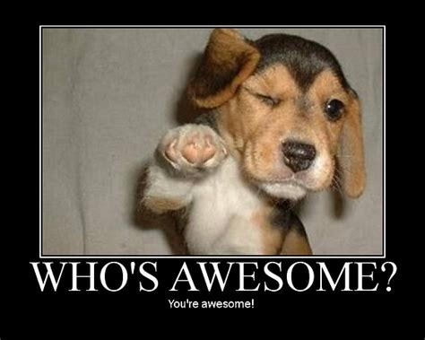 who s awesome you re who s awesome