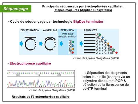Oral Diagnostic Mol 233 Culaire Pcr Multiplex S 233 Rotypage Expand Template Pcr System Roche