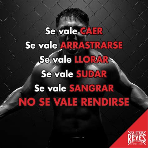 1000 images about frases motivacion on pinterest m 225 s de 1000 im 225 genes sobre boxing quotes en pinterest