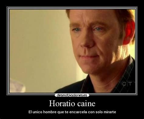 Horatio Caine Memes - horatio caine meme 28 images horatio caine