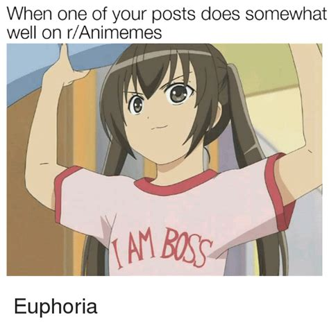 R Animemes by When One Of Your Posts Does Somewhat Well On Ranimemes