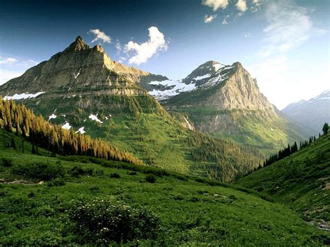Landscape View Definition Amazing Green Mountains With Trees Lanscape Wallpaper