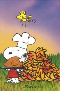 snoopy thanksgiving photos pin by debbi peplinski on snoopy pinterest