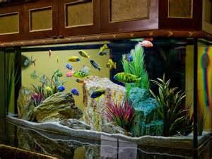 Salt Water Aquarium Decorating Tips Pictures to pin on Pinterest