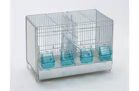 gabbie per calopsiti gabbie e gabbie professionali per uccelli