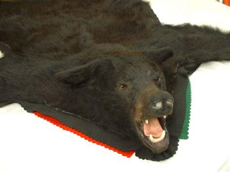 rugs with bears rugs