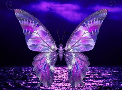 imagenes mariposas hermosas animadas hermosas mariposas imagenes zoom frases fondos