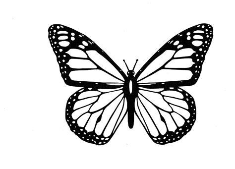 Tokomonster Beautiful Wall Vynil Decal Hitam kpi butterflies and single metric kaizen