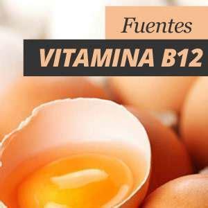 alimentos que contienen vitaminas b12 alimentos ricos en vitamina b12