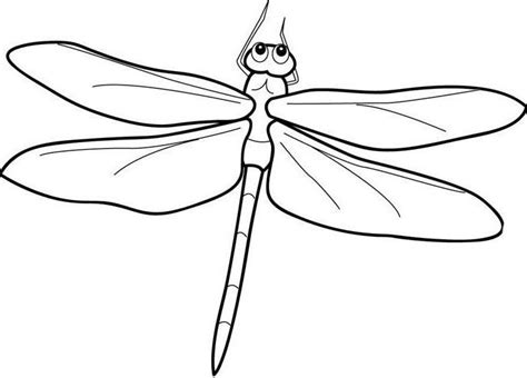 coloring dragonfly cartoon coloring pages