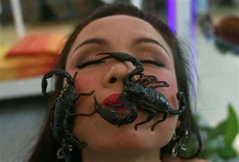 sognare scorpioni interpretazione numeri sognipedia it