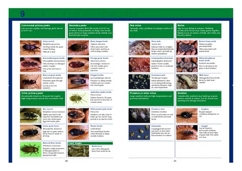 a guide to identifying your home d 233 cor style mite identification chart pest identification charts