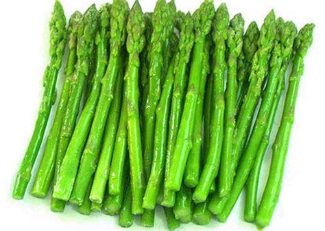 imagenes de esparragos verdes esp 225 rrago cultivo alternativo