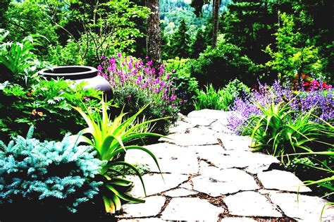 small gardens ideas on a budget small front garden ideas on a budget uk ideasb bbudgetb bb