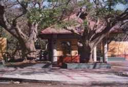 entrada zoológico barranquilla horarios y precios del zoo zool 243 gico de barranquilla